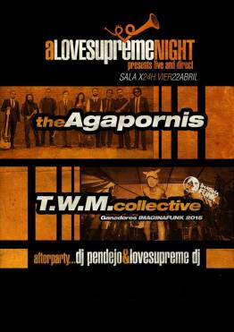 The agapornis + TWM COLLECTIVE SALA X